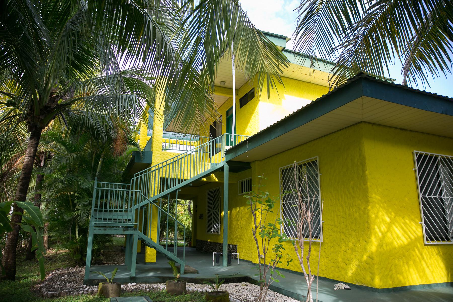 Casa Tortuga y Búho