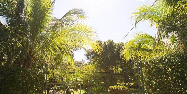 costarica-8075