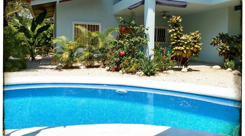 Swimming Pool and Ceiba Negra